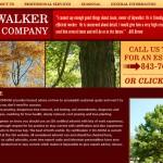 Skywalker Tree Company